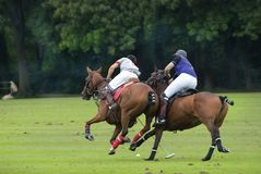 International Polo Tournament Royalty Free Stock Image