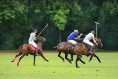 International Polo Tournament Royalty Free Stock Photos