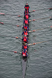 International Rowing Regatta in Turin Stock Image
