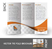 The International School Tri-Fold Brochure Royalty Free Stock Images