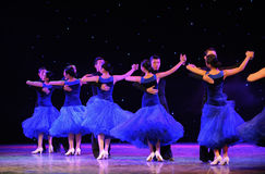 International Standard Dance-The campus show Stock Images