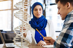 International students studying genetics. Involved in studying process. Pleasant delighted student studying with muslim girl and sitting at the table while royalty free stock images