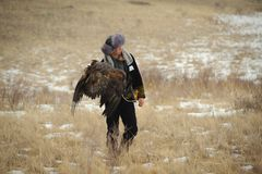 International tournament of masters of hunting with hunting birds Royalty Free Stock Photos