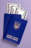 International Ukrainian passport with US dollars isolated on gray background. Stock Photo