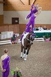 International Vaulting competition in Pezinok, Slovakia on June Stock Photo