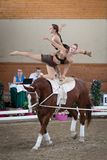 International Vaulting competition in Pezinok, Slovakia on June Royalty Free Stock Photography