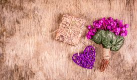 International Women`s Day. Gift box and spring flowers. Delicate violets and heart Stock Images