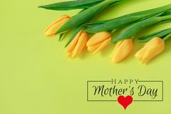 International Women`s Day on 8 March design. Tulips Flowers on background. royalty free stock photography