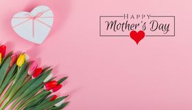 International Women`s Day on 8 March design. Tulips Flowers on background. stock photo