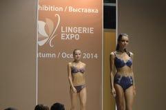 5. internationale Ausstellung von Unterwäsche, von Strandkleidung, von Ausgangsabnutzung und von Strumpfware Stockfotos