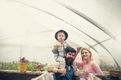 Internationale dag van Families internationale dag van familiesvakantie gelukkige famili celebarte internationale dag van stock foto's