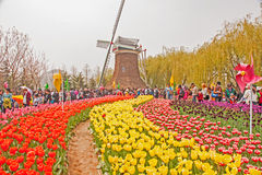 Internationale Gartenbauausstellung Qingd 2014 Lizenzfreies Stockfoto