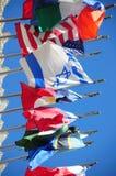 Internationale Markierungsfahnen lizenzfreie stockfotografie