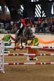 Internationale Springende Concurrentie Stock Fotografie