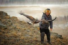 Internationale toernooien van meesters van de jacht met de jacht van vogels Royalty-vrije Stock Foto's