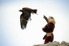 Internationale toernooien van meesters van de jacht met de jacht van vogels Stock Afbeeldingen