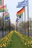 Internationale Vlaggen in Den Haag Royalty-vrije Stock Afbeelding