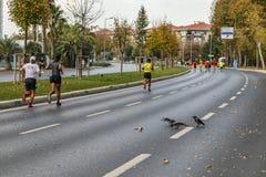 40. internationaler Istanbul-Marathon und -athleten stockfotografie