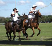Internationaler Polo Club - Wellington, Florida - Joe Lizenzfreie Stockfotografie