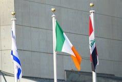 Internationalflaggor framtill av Förenta Nationernahögkvarteret i New York arkivfoton