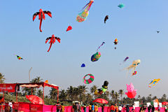 Internationell drakefestival i Colva, Goa Indien fotografering för bildbyråer