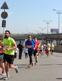 Internationell halv maraton Arkivfoto