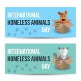 Internationell hemlös djurdag Den gulliga katten och hunden i en ask med behöver jag hem- text Daltar adoptionbegrepp Arkivfoton
