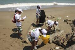 Internationell kust- rengöringsdagaktivitet i den LaGuaira stranden, Vargas statliga Venezuela royaltyfri bild