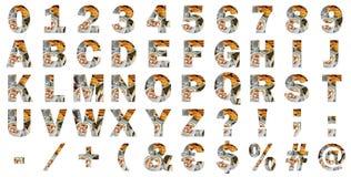 Internationella alfabetbokstäver för kvarter, nummer, speciala tecken och tecken Royaltyfria Bilder