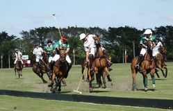 Internationella Polo Club - gummistöveln, Florida - Joe Arkivbild