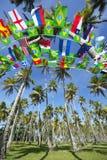 Internationella Team Flags Palm Grove Brazil Arkivfoto
