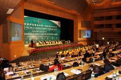 internationellt förenat nationseminarium Royaltyfri Fotografi