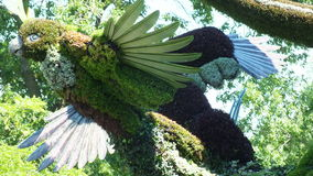INTERNAZIONALE 2013 di MOSAICULTURES a entrata di Montreal, Quebec, Canada, Montreal: L'albero dell'uccello immagini stock libere da diritti