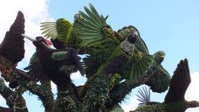 INTERNAZIONALE 2013 di MOSAICULTURES a entrata di Montreal, Quebec, Canada, Montreal: L'albero dell'uccello immagini stock