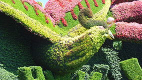 INTERNAZIONALE 2013 di MOSAICULTURES a Montreal, Quebec, Canada, Pechino, Cina, entrata: Piantatura degli alberi piani per attira fotografia stock