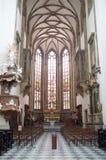 De kathedraal van Heiligen Peter en Paul in Brno stock foto's