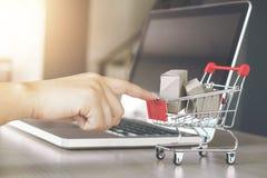 Internetär online-shoppingbegreppet, kvinnan som direktanslutet shoppar, a för Royaltyfria Foton