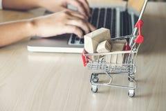 Internetär online-shoppingbegreppet, kvinnan som direktanslutet shoppar, a för Royaltyfri Bild