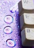 internet Zdjęcie Stock