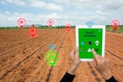 Internet av thingsargiculturebegreppet, smart lantbruk, smart ag Arkivbild