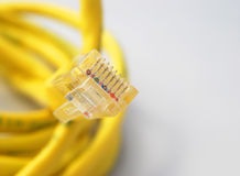 Internet cable Stock Photo