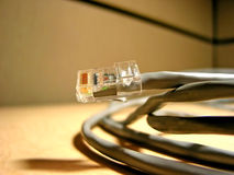 Internet cable closup Royalty Free Stock Photo
