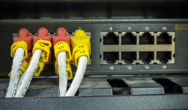 Internet cable lan. Close up internet cable lan Royalty Free Stock Image