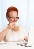 Internet che passa in rassegna durante la prima colazione Immagine Stock Libera da Diritti