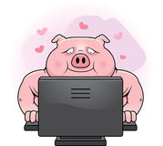 Internet Dating Pig Royalty Free Stock Image