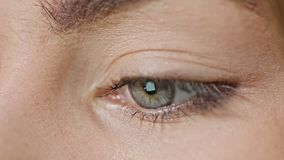 Internet de la lectura del ojo del ` s de la muchacha foto de archivo
