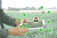 Internet del concepto de la agricultura de las cosas, cultivo elegante Foto de archivo