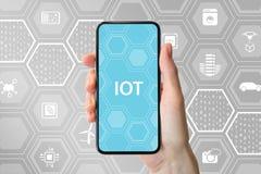 Internet del concepto de las cosas/IOT con la mano que sostiene smartphone bisel-libre moderno delante del fondo neutral con los  Imagenes de archivo
