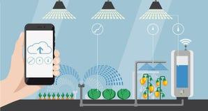 Internet delle cose nell'agricoltura Immagini Stock