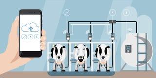 Internet des choses à l'exploitation laitière illustration de vecteur